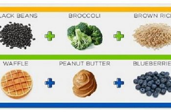 healthy food diagram