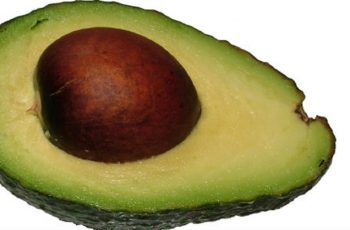 avocado pit uses